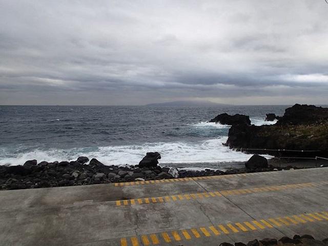 11月25日・伊豆海洋公園クローズ