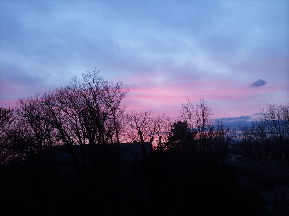 雲に映る淡いピンクの日差し