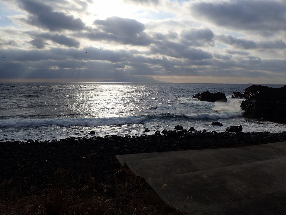 残念ながら荒れたコンディションで伊豆海洋公園クローズ