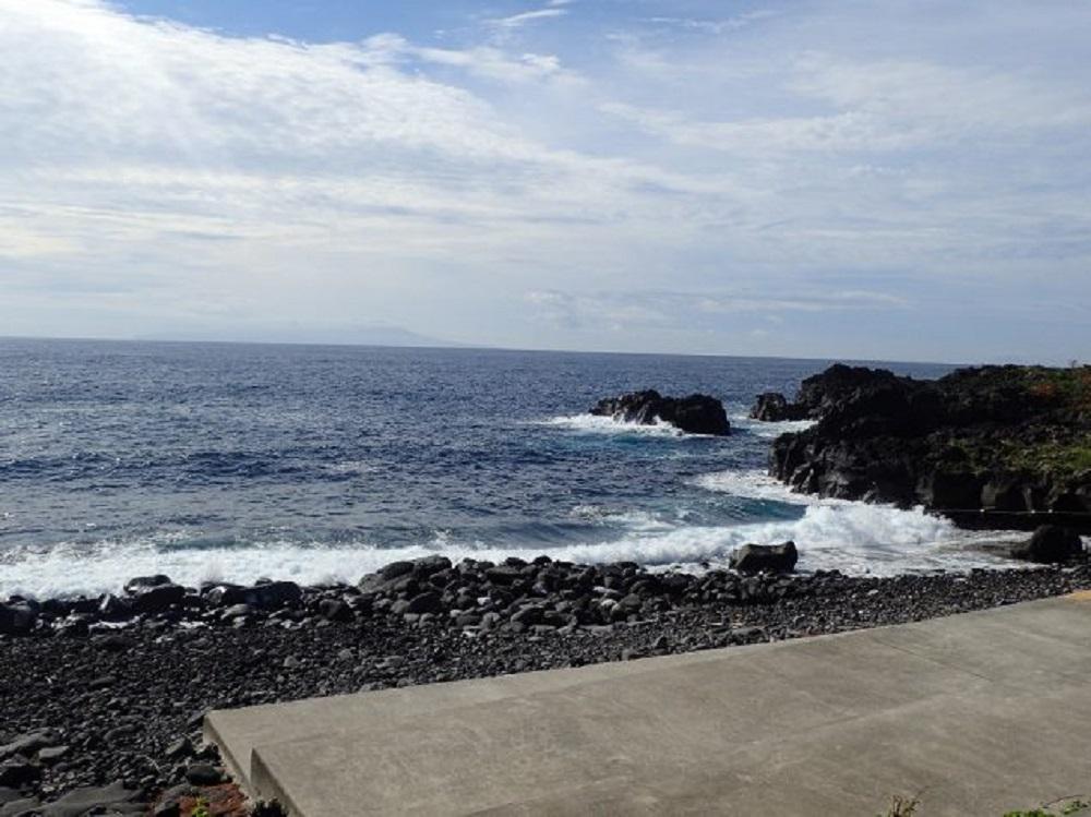今日の伊豆海洋公園