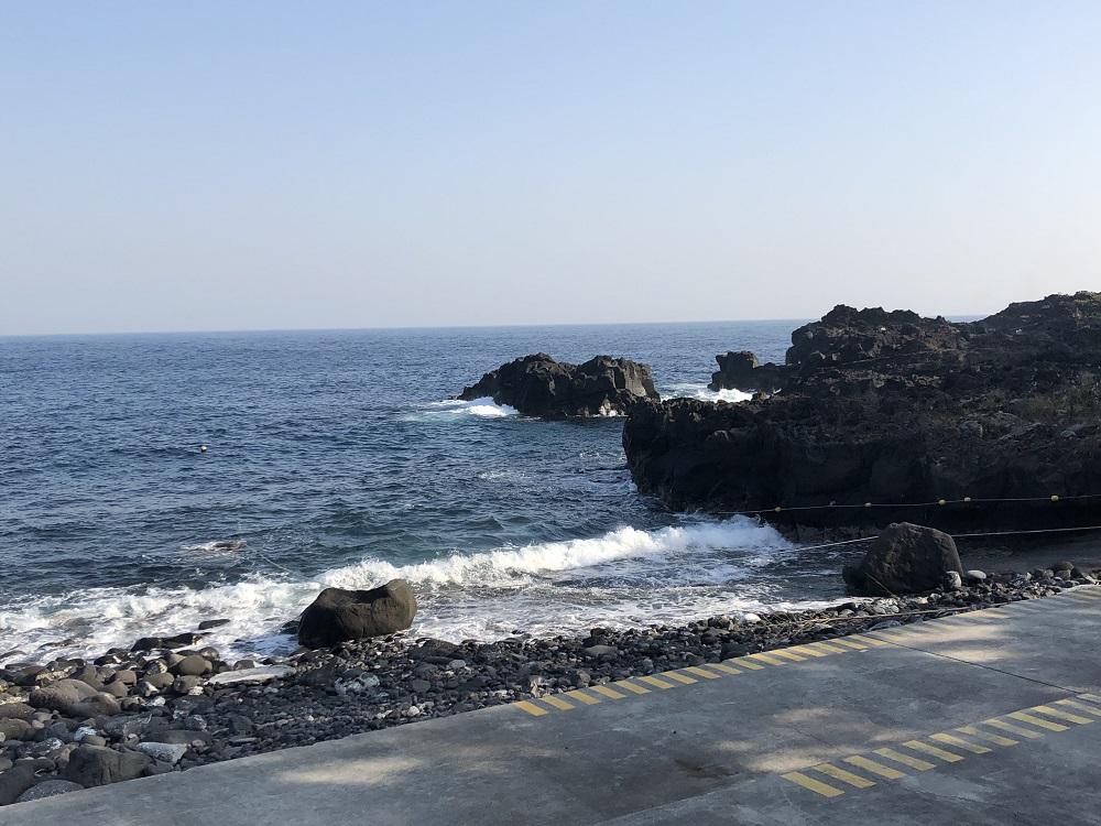 伊豆海洋公園・2月20日のコンディション