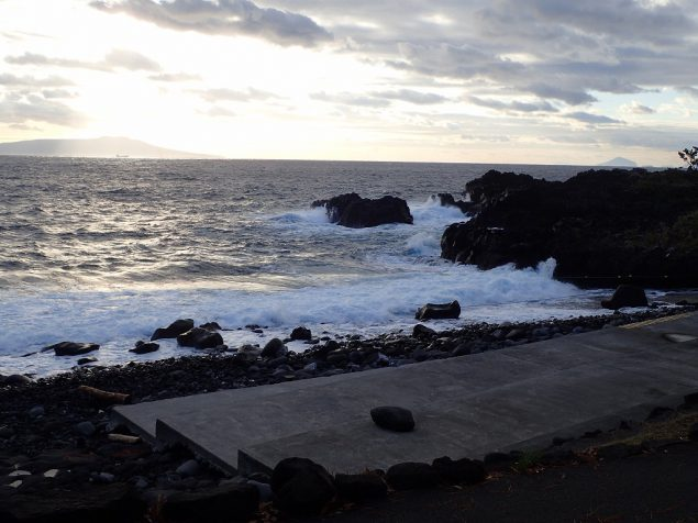 今日の伊豆海洋公園・まだまだ波高く潜水禁止