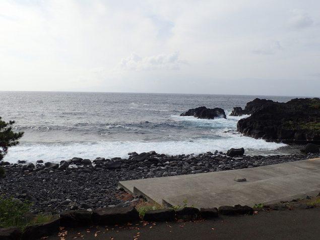 今日の伊豆海洋公園エントリー口の様子