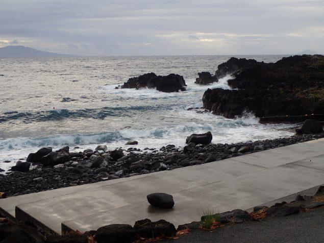 今日のエントリー口・伊豆海洋公園