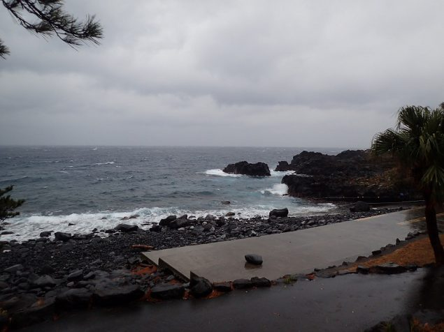 伊豆海洋公園、今日のコンディション