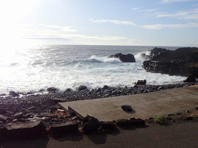 今日の伊豆海洋公園・ダイビングコンディション