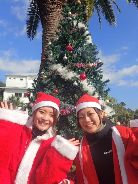 体験ダイビング・伊豆海洋公園クリスマスバージョン