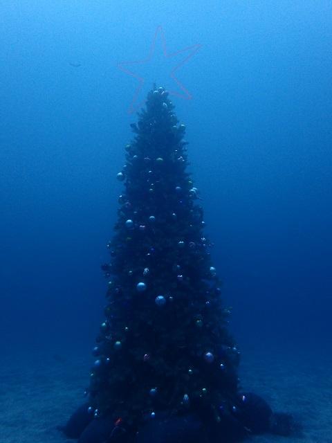 水深20mに設置されたクリスマスツリー