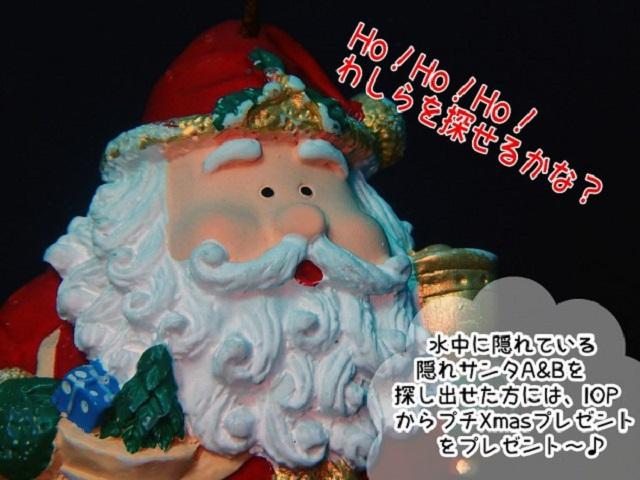 クリスマス企画発動中!