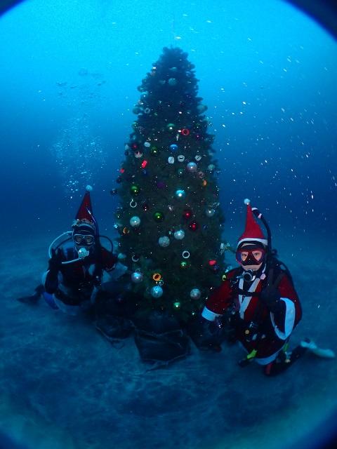 大盛況、クリスマスツリー