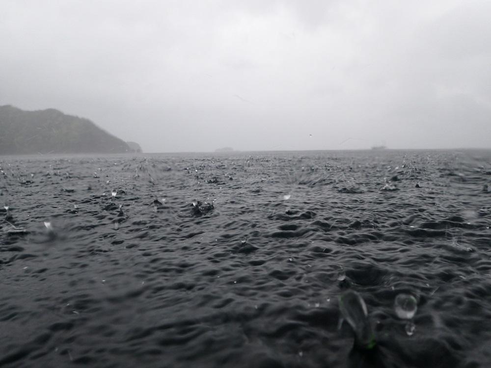 水面を叩く雨で、水面に王冠が出来上がった!