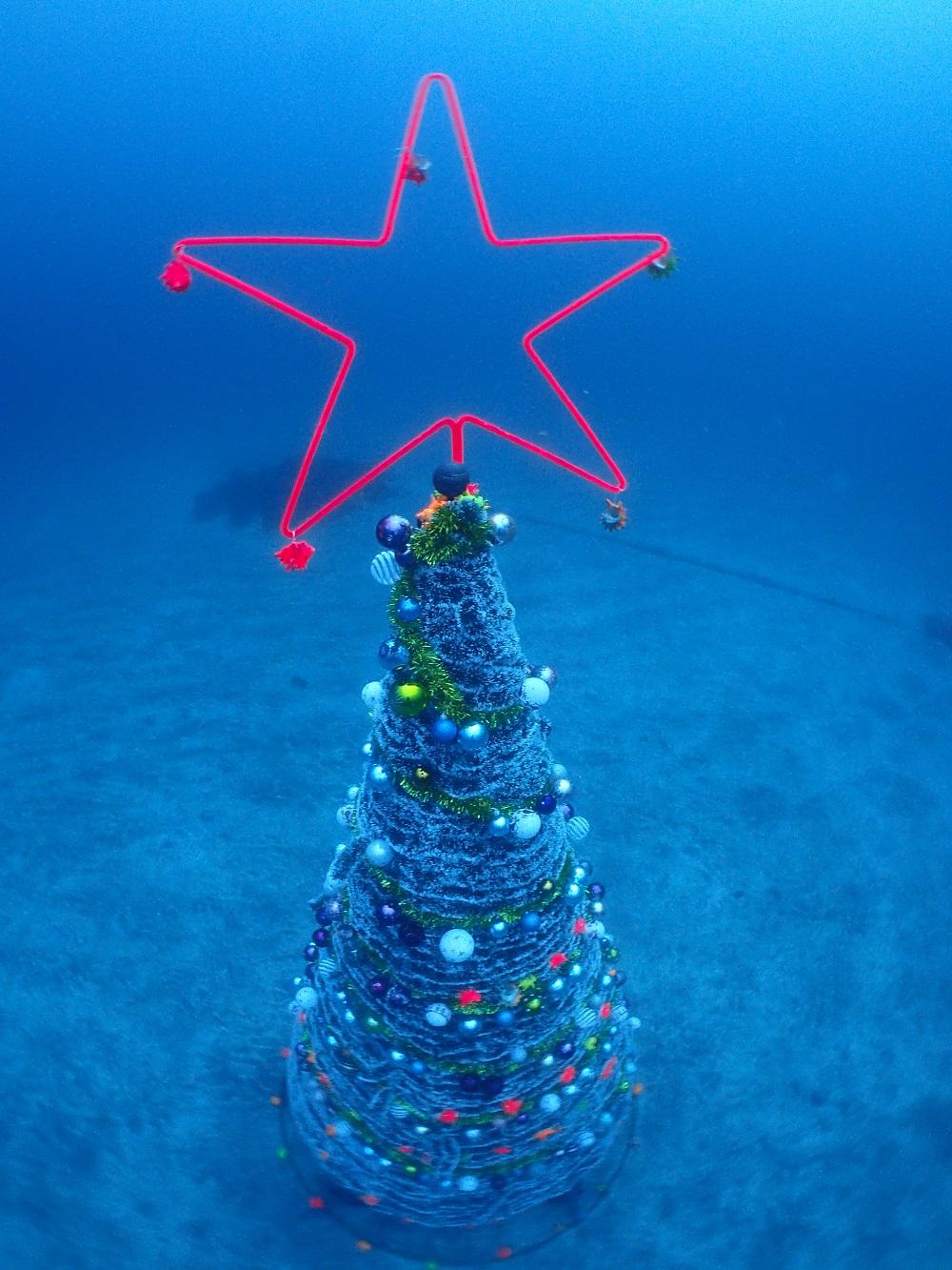 砂地に設置されたクリスマスツリー2016年バージョン