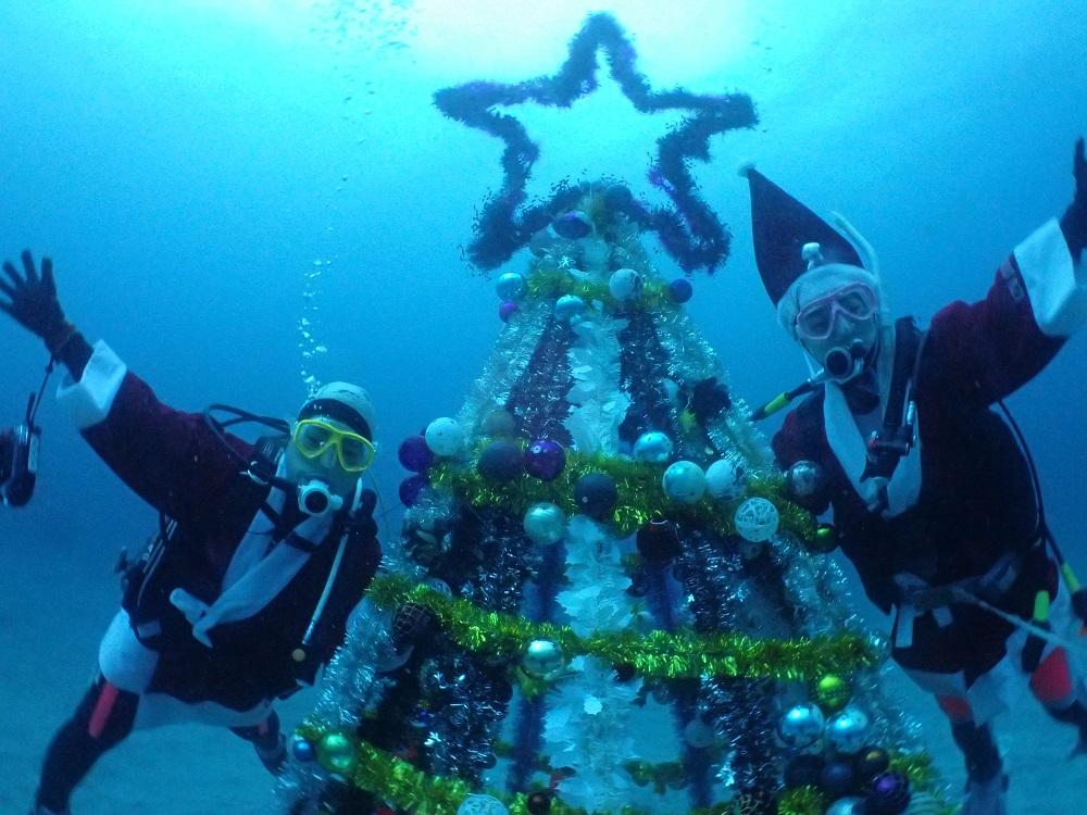 クリスマスツリー前にて