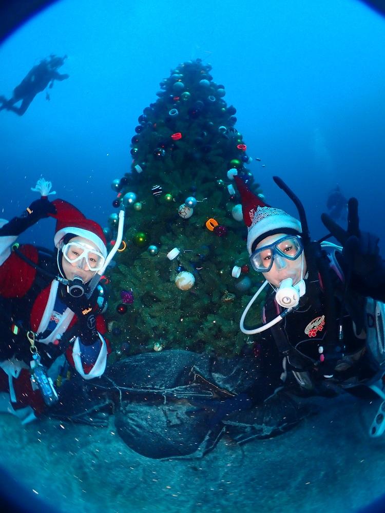 伊豆海洋公園・クリスマスツリー前にて