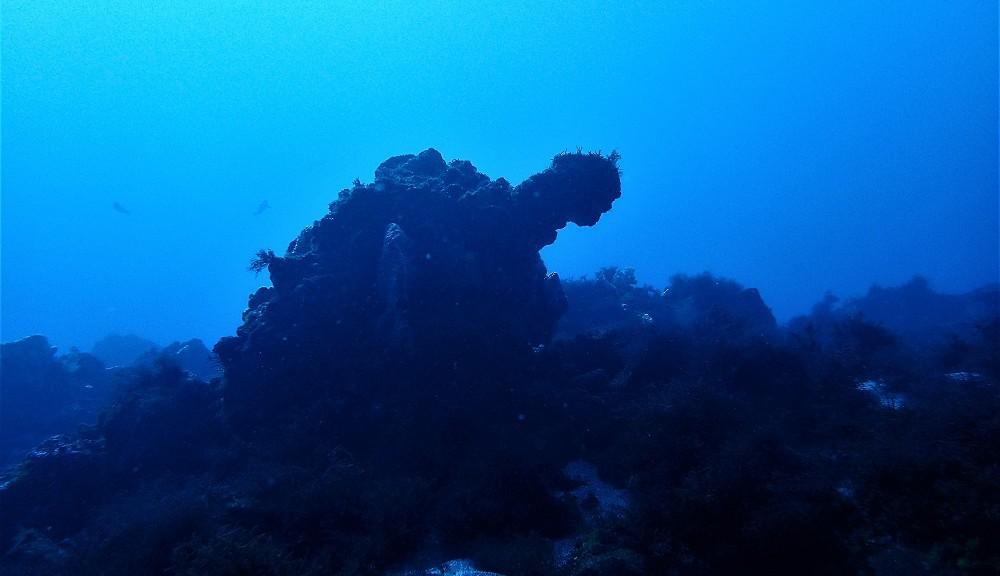 1,5の根・カメ岩