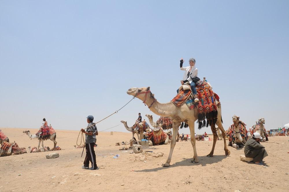 砂漠、ラクダにも乗った