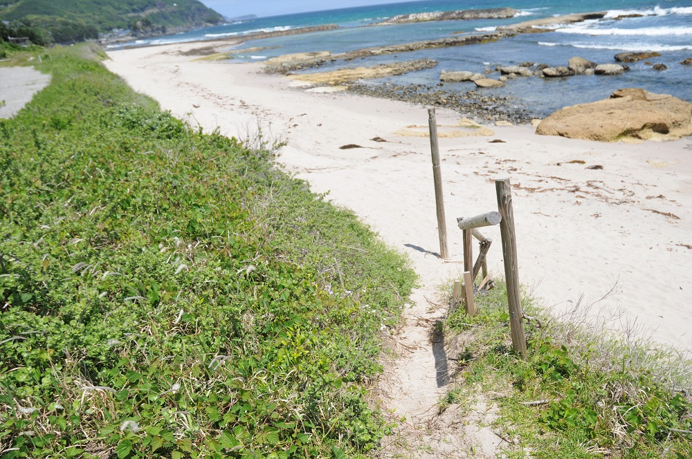 白い砂浜へつながる道