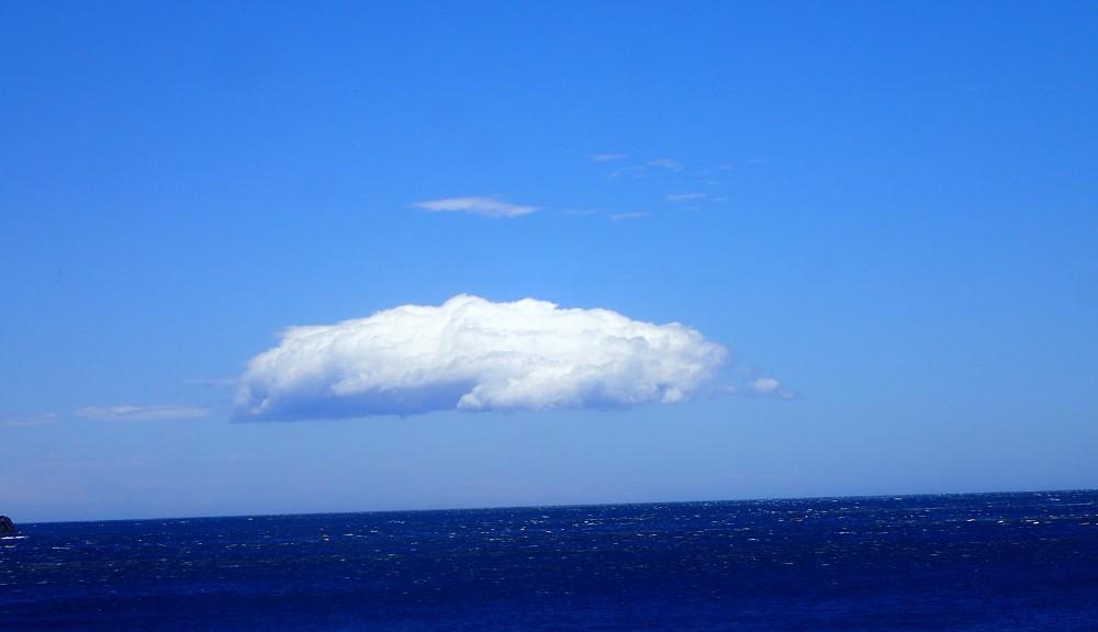 イルカ雲に見える、、、