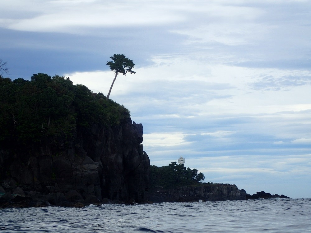 崖上に一本松、さらに奥には門脇灯台が見える