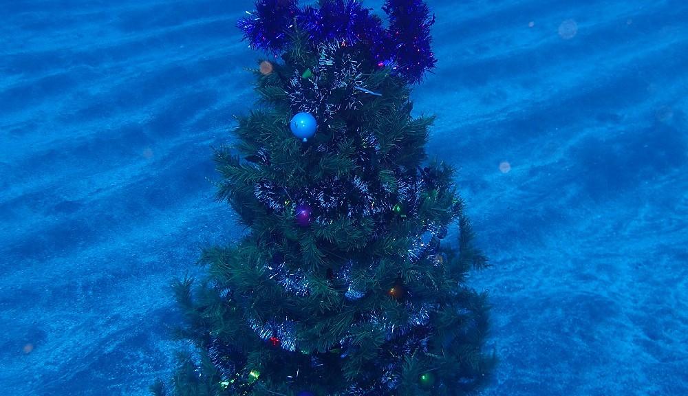 簡易クリスマスツリー