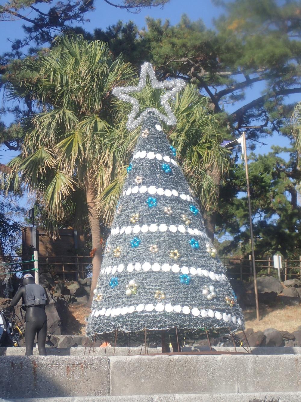 近日設置予定・クリスマスツリー