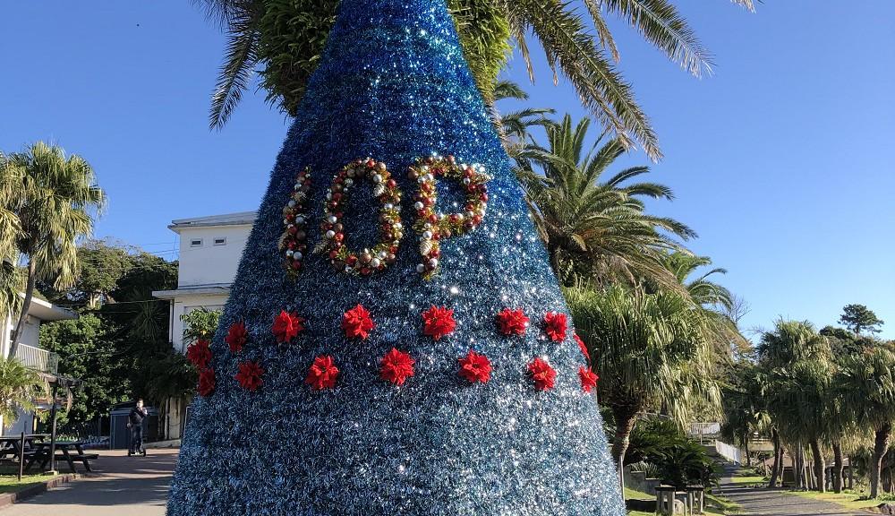 クリスマスツリー・設置完了!