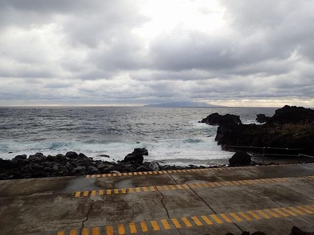 伊豆海洋公園潜水禁止