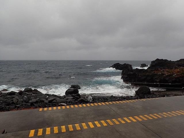 伊豆海洋公園・海洋状況