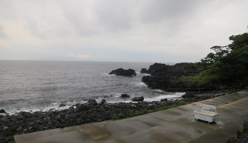 今日の海洋状況・伊豆海洋公園