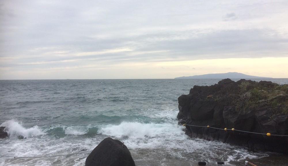今日の伊豆海洋公園、段々うねりの波も小さくなってきています。