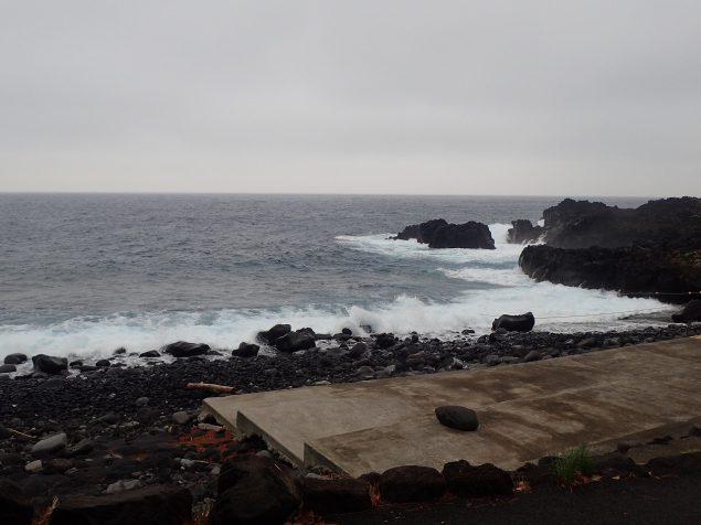 今日の伊豆海洋公園エントリー場所の様子