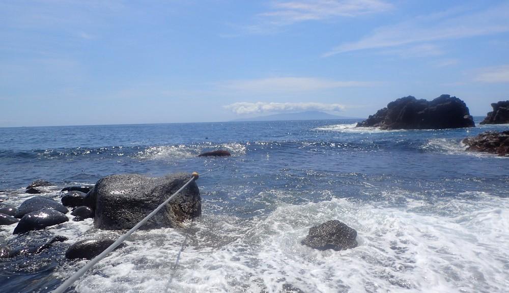 今日の伊豆海洋公園コンディション