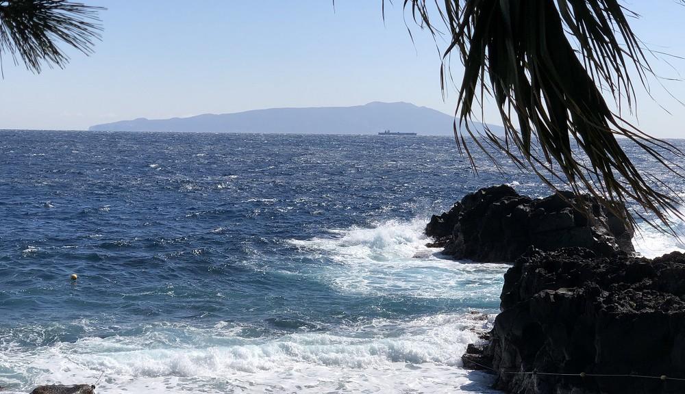 今日の伊豆海洋公園・コンディション