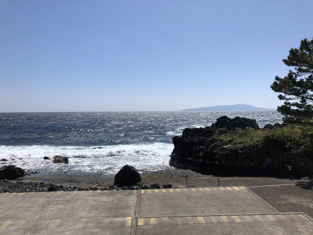 今日の伊豆海洋公園・エントリー口